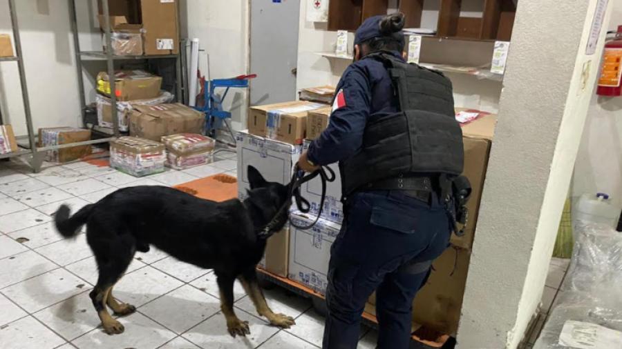 Realizan operativo policiaco en empresas de paquetería