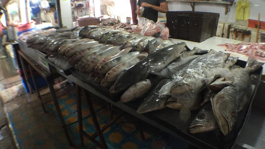 Vendedores de mariscos analizan incremento por gsolinazo