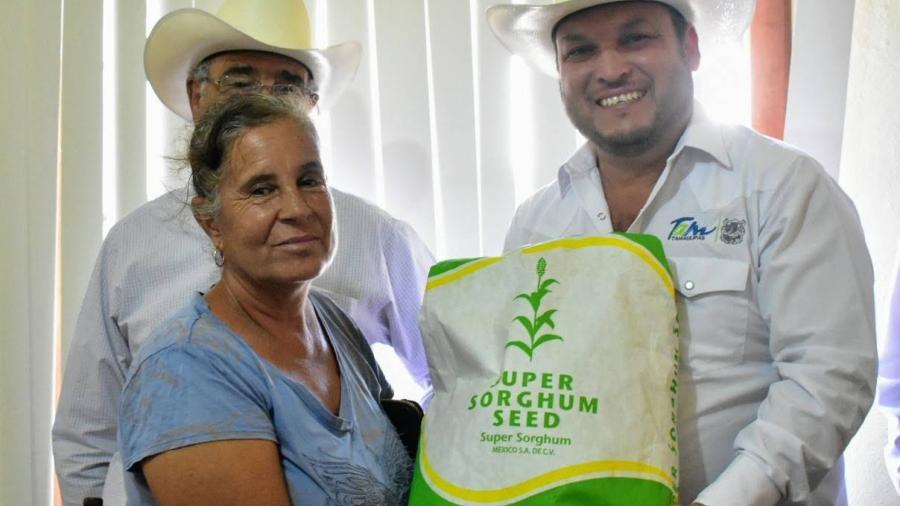 Agricultores reciben 11.7 ton de semilla de súper sorgo