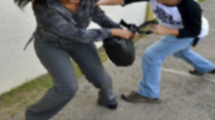 Detienen a dos jóvenes por robo a mujer