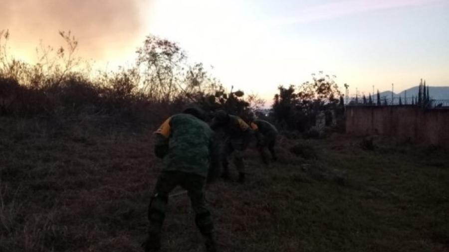 Extinguen incendio forestal en el Bosque La Primavera