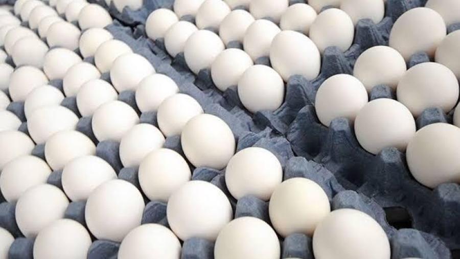 Sube 6 pesos el kilo del huevo