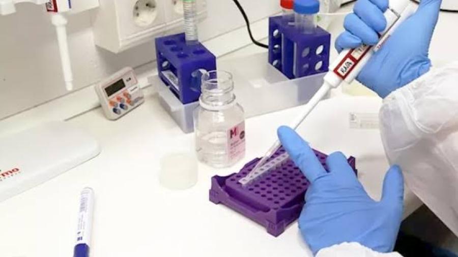 Tamaulipas supera los 6 mil casos de coronavirus