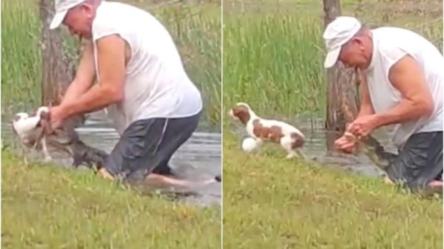 Hombre lucha con cocodrilo para rescatar a su perro
