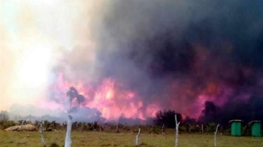 Incendio forestal arrasa con 200 hectáreas en Aldama