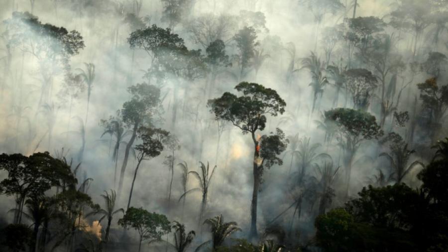 ¡Amazonía continúa en llamas! Registra Brasil mayor número de incendios desde 2007