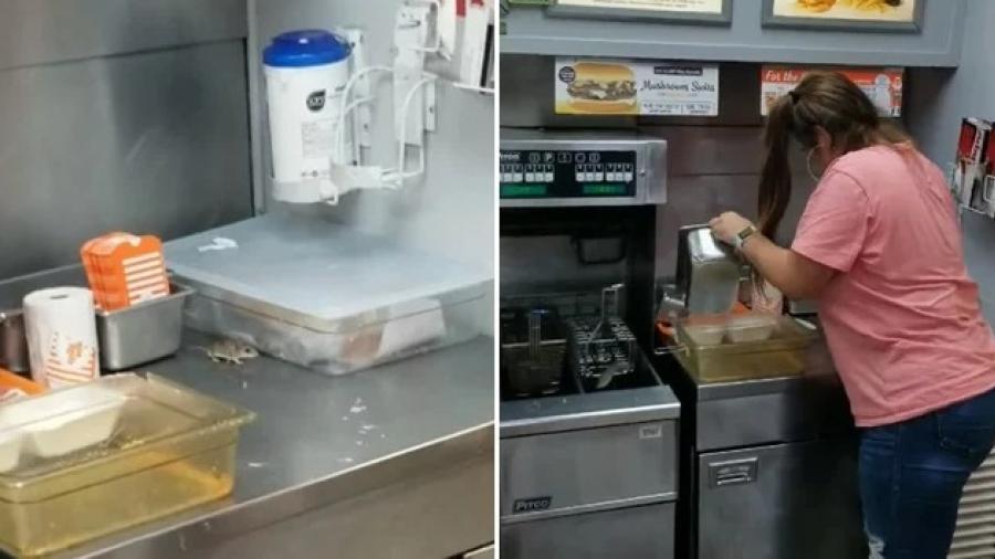 Ratón se pasea la cocina en un Restaurant de Texas
