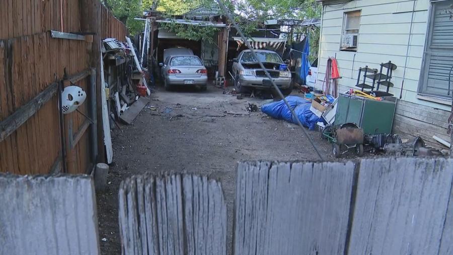 Adolescente de Texas fallece tras ataque de tres perros