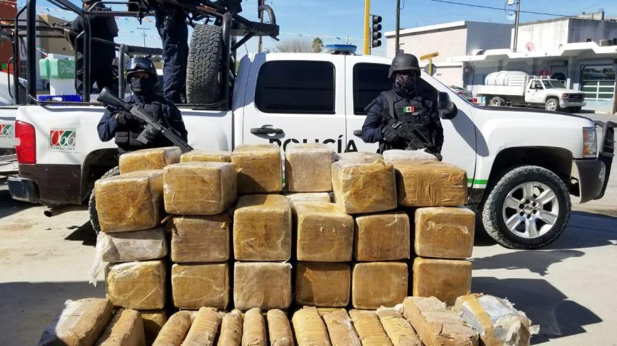 Incautan 536 kg de marihuana en Miguel Alemán