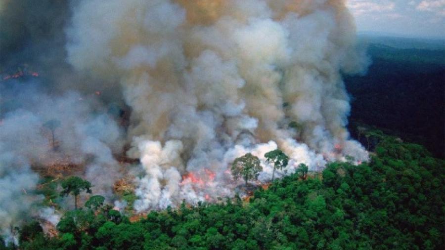 Bolsonaro culpa a ONG de incendios en la Amazonia