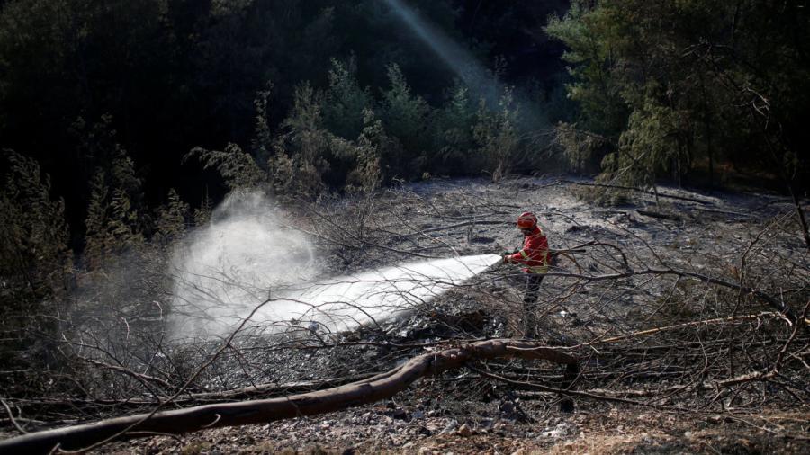Controlan incendio forestal del Algarve en Portugal