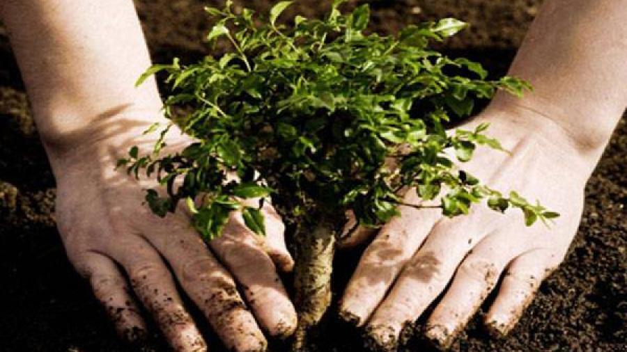 Promueven la cultura ambiental en Nuevo Laredo