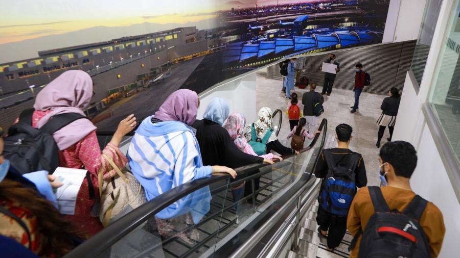 Llega a México cuarto grupo de refugiados afganos; se trata de periodistas y activistas