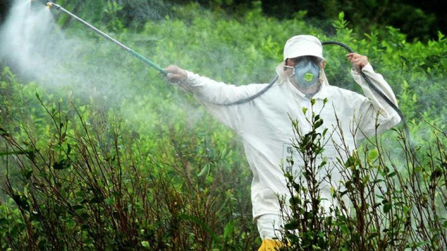 Condenan propuesta de rociar químicos para hallar a migrantes