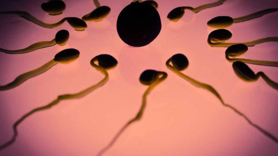 Hombre que donó esperma es declarado padre legal de una niña