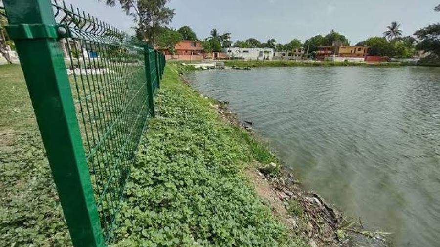 Por peligro de cocodrilos, cercan lagunas en Madero
