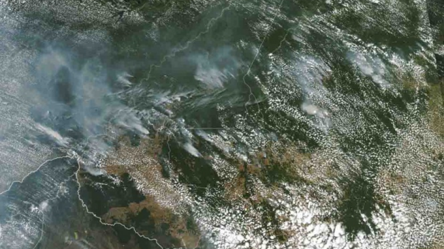 Protestan para que Brasil controle incendios en el Amazonas